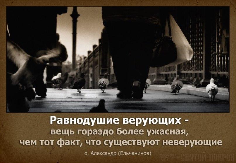 картинки с фразами про равнодушие нашей стране